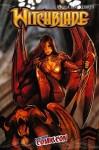 Witchblade 160 Variant - NYCC 2012 - Image Comics - Tim Seeley - Stjepan Sejic